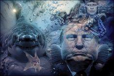 Dangerous Seas   por Daniel Arrhakis Little Fish, Big Fish, Breathing Underwater, Seas, Collage Art, Surrealism, Funny Pictures, Creatures, Humor