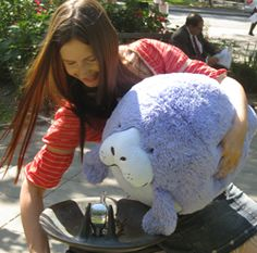 Oh the huge Manatee! #squishable