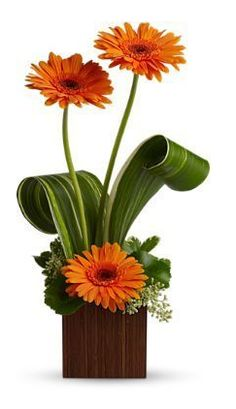 "Bamboo Sunshine bouquet Surprise someone special with three sunny gerbera flowers delivered in a stylish contemporary cube vase with a look of bamboo. It will brighten their day - for days. The cheerful bouquet includes gerberas accented with assorted greenery and delivered in a 4 1/2"" contemporary cube vase. Bouquet is approximately 19"" H x 10 1/4"" W Toronto Floers by 4165flower.com"