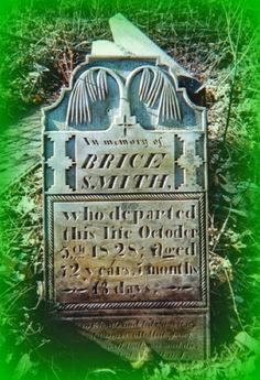 Climbing My Family Tree: Erin Go Bragh for Tombstone Tuesday: Smith, Larimer, Gallagher, McClure, Shehen  #genealogy