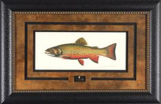 Brook Trout w/ Fly Joesph Tomelleri 29x19 Gallery Quality Framed Art Print Fishing Country Picture Picture Peddler,http://www.amazon.com/dp/B0041QOBMM/ref=cm_sw_r_pi_dp_aEfFtb09J9N4X2E7