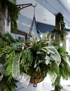 winter hanging baskets, festive way to adorn  dormant planters