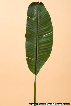 Fake banana leaf plants artificial plants at for Artificial banana leaves decoration