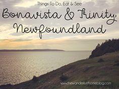Things To Do Bonavista & Trinity, Newfoundland Newfoundland Tourism, Newfoundland Canada, Newfoundland And Labrador, Newfoundland Recipes, Stuff To Do, Things To Do, East Coast Travel, Atlantic Canada, Prince Edward Island