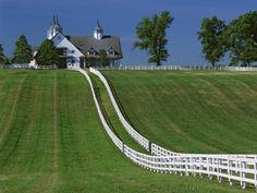horse barn heaven.