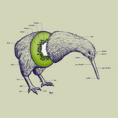 Kiwi Anatomy Art Print // by William McDonald [available @ Society6]