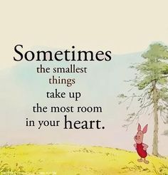 add to my Hundred Acre Woods sayings for future nursery.