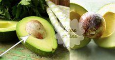 Incrível! Sabia que o caroço de abacate deve ser aproveitado? Descubra aqui o motivo! - # #abacate #caroço