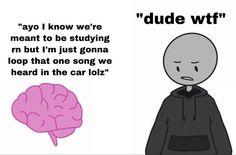 Really Funny Memes, Stupid Funny Memes, Funny Laugh, Funny Relatable Memes, Hilarious, Lol Memes, Days Manga, Little Bit, I Hate My Life