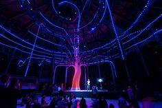arboreal lightning by atmos studio responds to musical performances