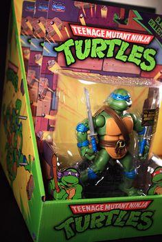 My Leonardo figure from the 2012 Teenage Mutant Ninja Turtles (TMNT) Classic Collection.