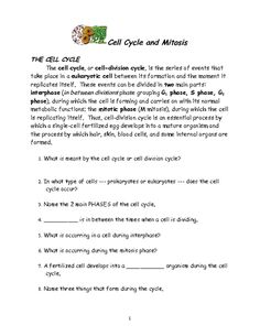 Cell Cycle and Mitosis Puzzle from Teachers Pay Teachers ...