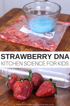Smashed strawberries and DNA! Learn how to extract strawberry DNA science with kids for cool food science. A strawberry DNA extraction lab is easy! Have you ever seen DNA up close? My guess is no! This strawberry DNA science activity is perfect for your budding scientist to experiment with in the kitchen. Smashed strawberries, DNA you can see, and an AMAZING new learning experience! #HandsOnLearning #AtHomeLearning #ElementaryScience Food Science Experiments, Science Week, Science Activities For Kids, Easy Science, Preschool Science, Stem Activities, Elementary Science, Science Classroom, Science Lessons