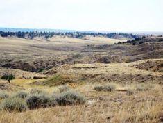Buffalo Gap National Grassland South Dakota