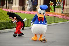 Donald spots ducks & Mickey lolz