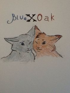 Bluestar & Oakheart! Forbidden love. XD, winner of  the  contest fave warrior  couple, you  will  choose  the  next  contest