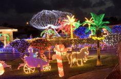 Christmas in Grand Cayman! Beautiful
