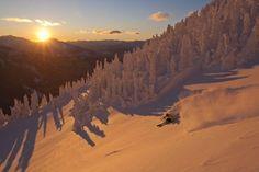 Ski Whistler | Whistler Accommodation | Whistler Hotels | Whistler Apartments | PowderBeds