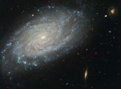 A 100.000 AL, NGC 3370 se parece mucho a nuestra galaxia, la Vía Láctea. A su alrededor, otros miembros de su grupo.