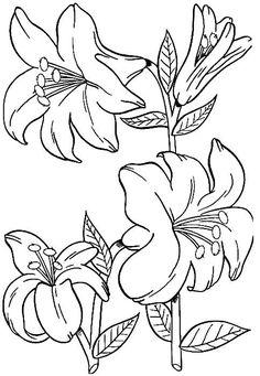 Desenho: Flores bonitas | Colorir Desenhos