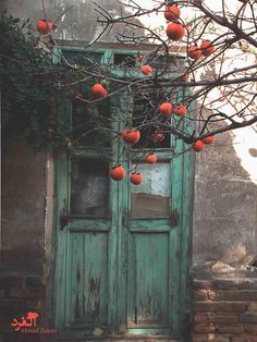 the home of the pomegranate...