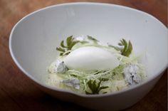 Nuevos significados de la marihuana en las culturas, aróma de algunos de los platos usados por chefs en Dinamarca.