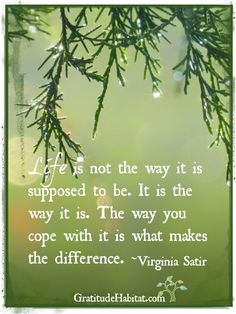 It is what it is. Visit us at: www.GratitudeHabitat.com #gratitude #life-quote #Virginia-Satir
