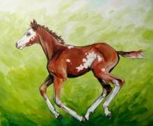 Young Spirit Art of Anita Klein Favorite Subject, Canadian Artists, Vibrant Colors, Wildlife, Spirit, Paintings, Horses, Landscape, Gallery