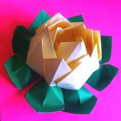 Origami loto flower
