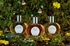 Aimée de Mars Perfumes | Fragrances for Body & Soul