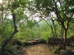 ah. Bushveld tranquility.