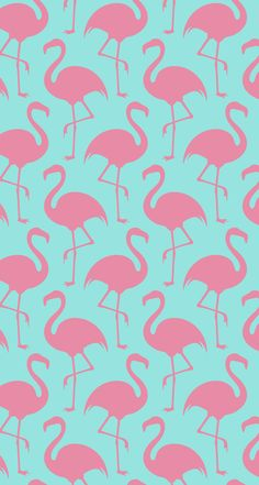 Pink on pink flamingos pink wallpaper vector, pink flamingo wallpaper, pink Pink Wallpaper Vector, Pink Flamingo Wallpaper, Sf Wallpaper, Iphone Wallpaper Images, Wallpaper Iphone Disney, Pink Flamingos, Pattern Wallpaper, Cute Wallpapers, Wallpaper Backgrounds