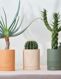 Etch featured vintage inspired patterns have been hand etched into moulds creating stunning symmetrical designs. Each pot is designed with a tray so that you can pot directly into the planter and know that your plant is still experiences proper drainage.
