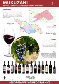 Mukuzani - Georgian Wine Infographics (46) | Marani