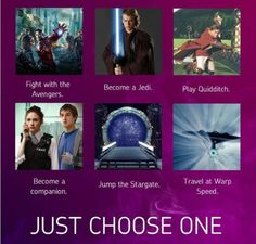 What?! I can't chose! Wait yes I can, become a companion.