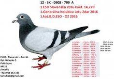 SK-2012-0908-799