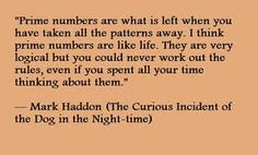 the curious incident of the dog in the nighttime essay quotes Curious incident of the dog in the night time this essay curious incident of the dog in the night time and other 63,000+ term papers, college essay examples and free.