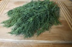 How to Dry or Freeze Dill Weed to Preserve It