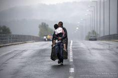 Ο Γιάννης Μπεχράκης καλύτερος φωτογράφος σε παγκόσμιο διαγωνισμό |thetoc.gr