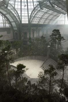 haute couture - an amazing forest in the Grand Palais, on january 20 . haute couture - an amazing forest in the Grand Palais, on january 2013 In modern cities, it is sort of impo. Art Et Architecture, Beautiful Architecture, Plant Aesthetic, Slytherin Aesthetic, Grand Palais, Into The Woods, Abandoned Places, Abandoned Castles, Aesthetic Pictures