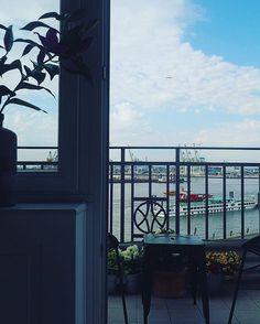 Morgen ️  #balcony #balkon #bloom #blooms #details #elbe #Fischmarkt #flower #flowers #goodmorning #Hamburg #hh #home #interieur #interior #interiordesign #interiores #interiorstyling #living #myhome #myview #room #view