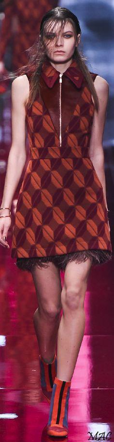 Fall 2015 Ready-to-Wear Just Cavalli
