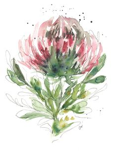 x Original Watercolour and Ink on fine art paper. Protea Art, Protea Flower, Watercolor Pencil Art, Abstract Watercolor, Watercolor Flowers, Watercolor Paintings, Abstract Art, Art Courses, Watercolour Tutorials