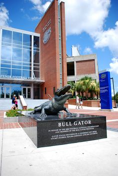 Football Complex University of Florida - My view every day while going to the Journalism college on campus. Florida Gators Football, Gator Football, Universities In Florida, Gainesville Florida, Florida Girl, University Of Florida, Sunshine State, Buckeyes, Alabama