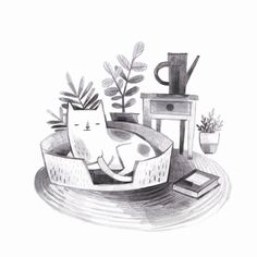 Sleepy Cat illustration by Kass Reich, graphite - Art Print Available