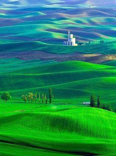 The Palouse Region, Washington State, USA.