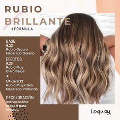 Brown Hair With Highlights, Colored Highlights, Hair Color Formulas, Cabello Hair, Hair Color Techniques, Beach Hair, Hair Looks, New Hair, Braided Hairstyles
