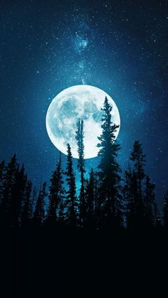 Night Trees And Moon - IPhone Wallpapers