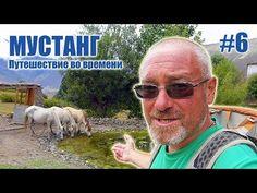 Деревня где живут только лошади - МУСТАНГ: Путешествие во времени #6 - YouTube