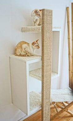 Cooler Designer Kratzbaum mit einem sehr langem Vollholz Kratzstamm. Super Liegeplätze für Katzen